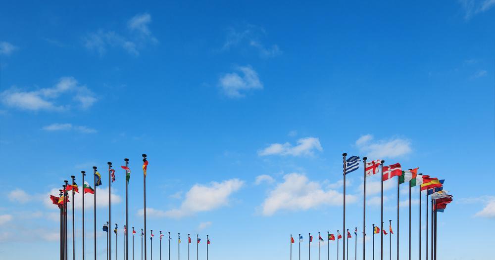 Tarptautinių organizacijų rūšys