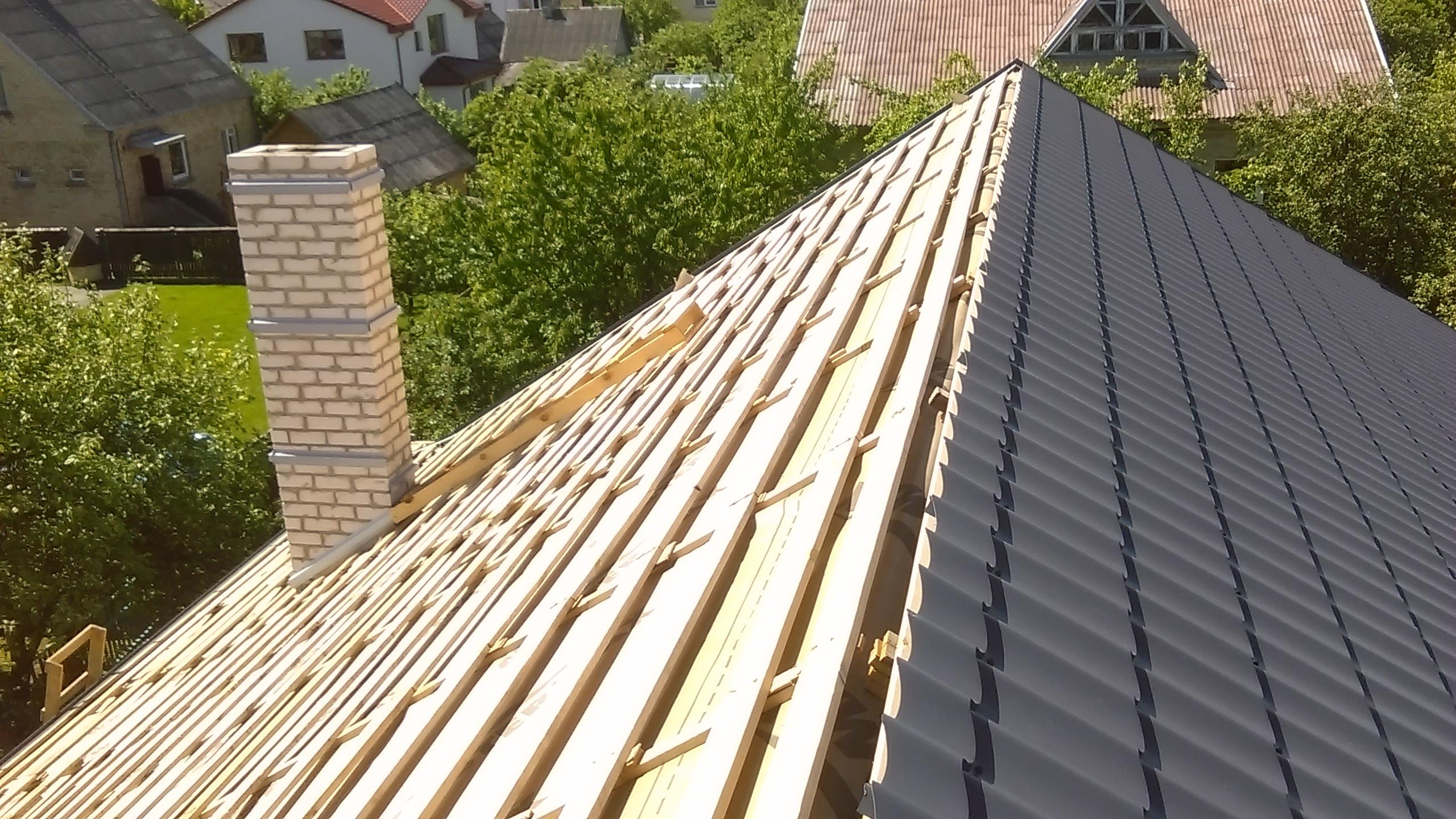 Kuo ypatingi Lietuvos pastatų stogai ?