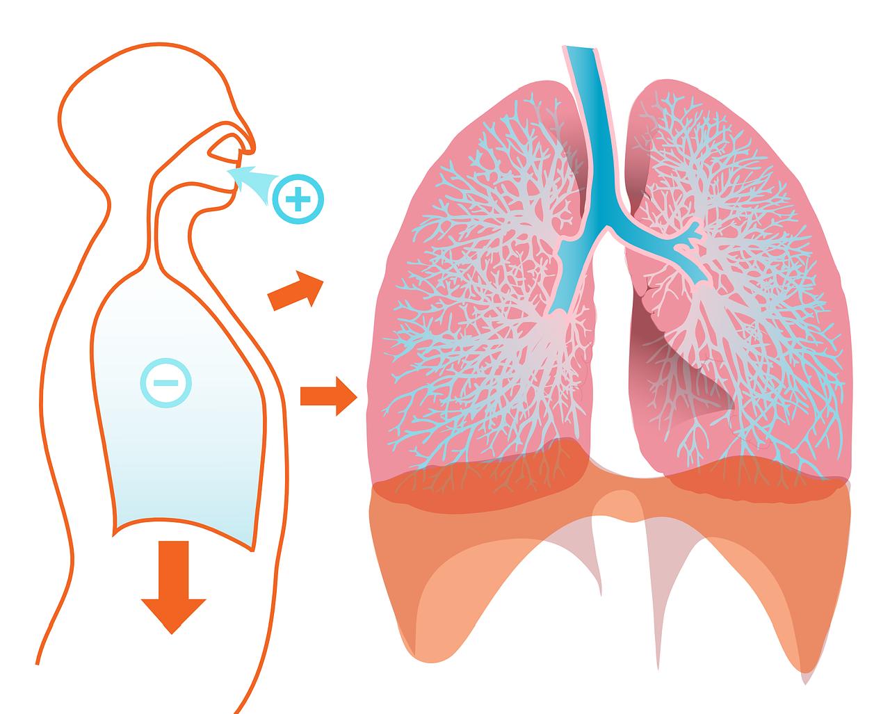inhaliacijos